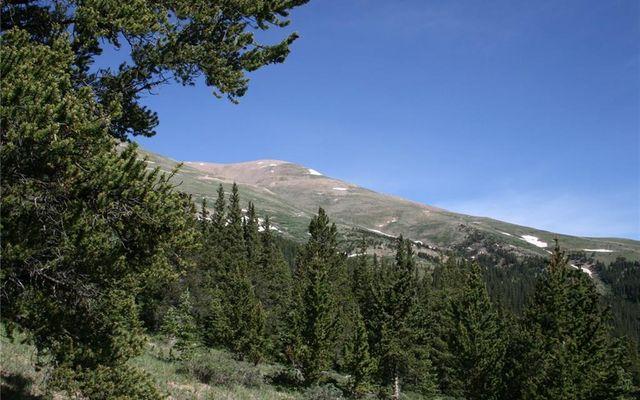 000 CO 787 ROAD ALMA, Colorado 80420