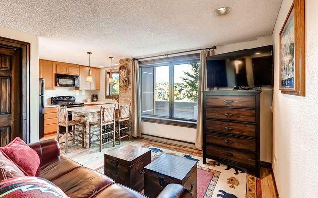 535 S Park AVENUE S # 218 BRECKENRIDGE, Colorado 80424
