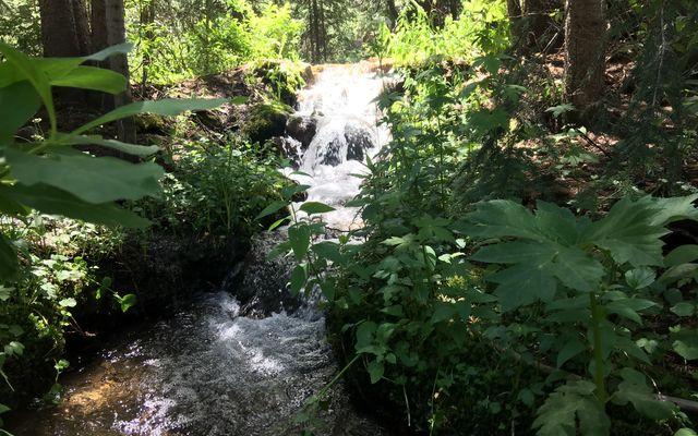 45 Pennsylvania Creek Trail - photo 29