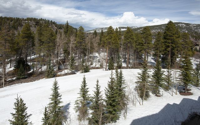 Mountain Thunder Lodge # 1403 - photo 26