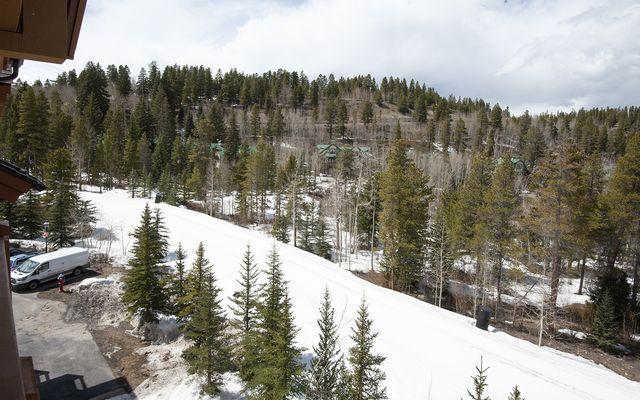 Mountain Thunder Lodge # 1403 - photo 27