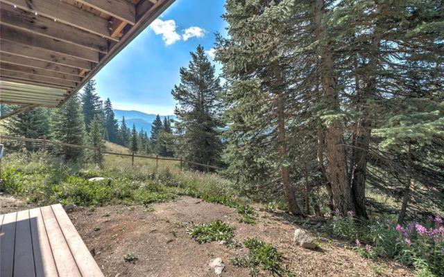 321 Monte Cristo Mine Road - photo 28