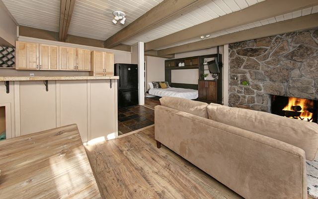 Panorama Alpine Condo # 103 - photo 8