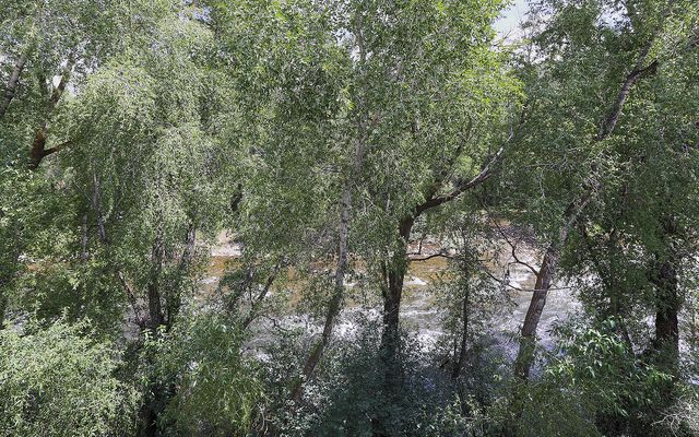 River Pines Condo # c304 - photo 6