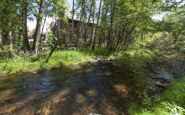 Creekside Condo # 20c - photo 1