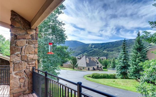 Enclave At Keystone Mountain Condo # 17 - photo 3