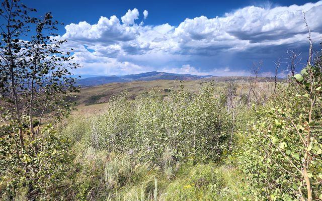 179 Summit Springs Road - photo 5