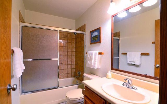Buffalo Ridge/Village Condo # 204 - photo 11