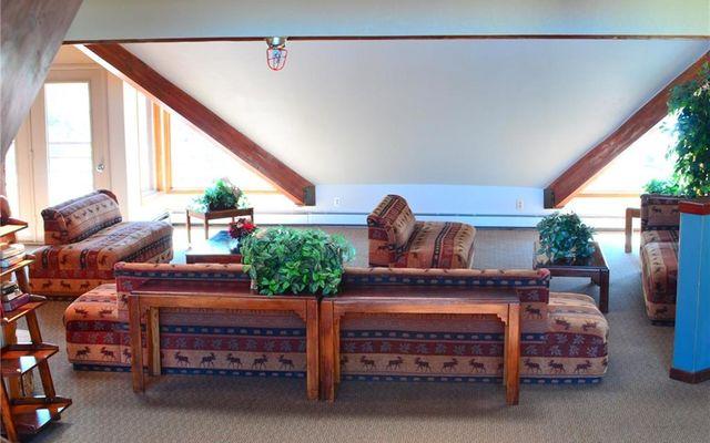 Buffalo Ridge/Village Condo # 204 - photo 14