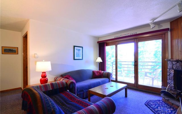 Buffalo Ridge/Village Condo # 204 - photo 3