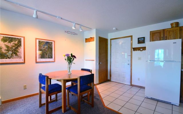 Buffalo Ridge/Village Condo # 204 - photo 5