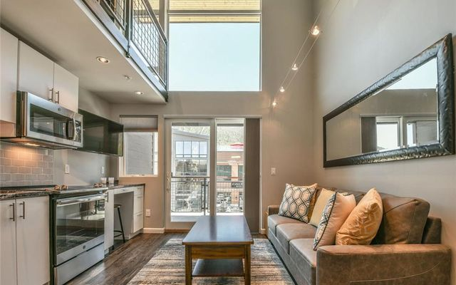 100 BASECAMP WAY # 212 FRISCO, Colorado 80443