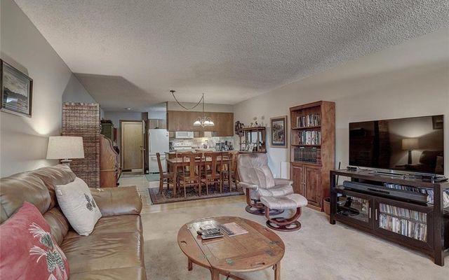 Meadow Creek Villa Condo # 208 - photo 3