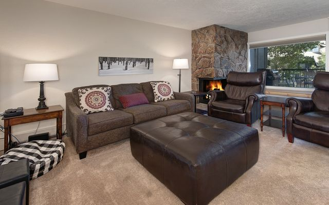 Mountain Meadows Condo # 304 - photo 1