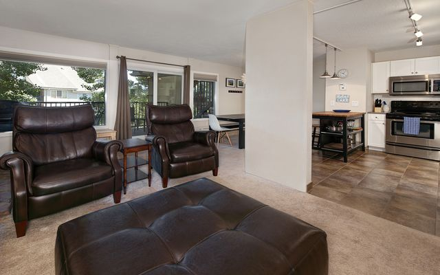 Mountain Meadows Condo # 304 - photo 3