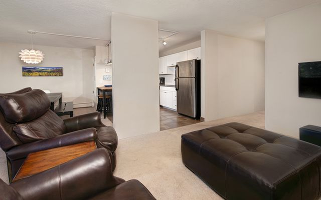 Mountain Meadows Condo # 304 - photo 4