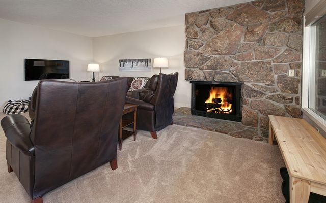 Mountain Meadows Condo # 304 - photo 5