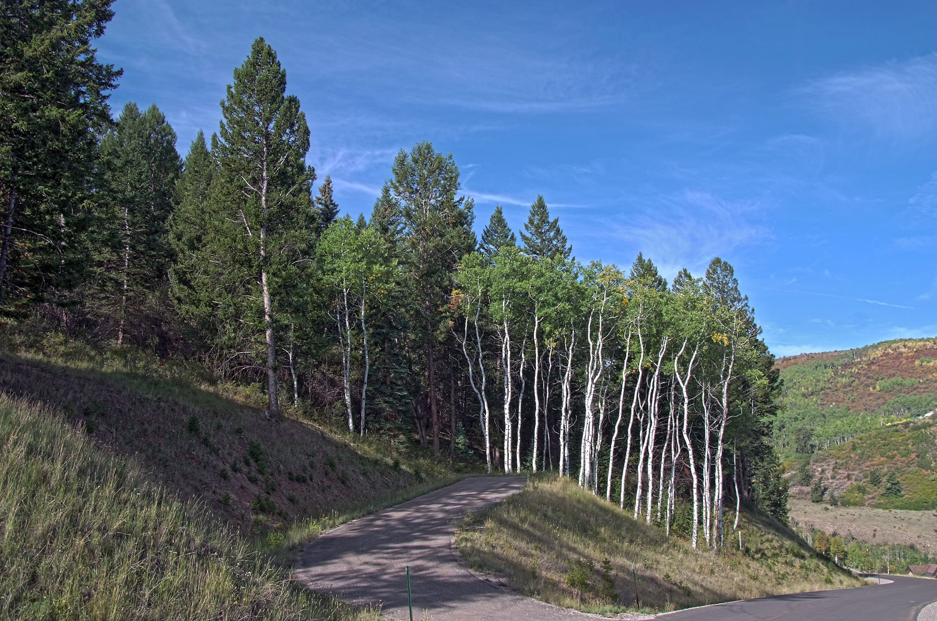 176 Sunquist Road Edwards, CO 81632