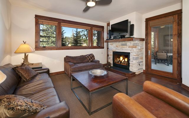 Bluesky Breckenridge Condo # 406 - photo 7