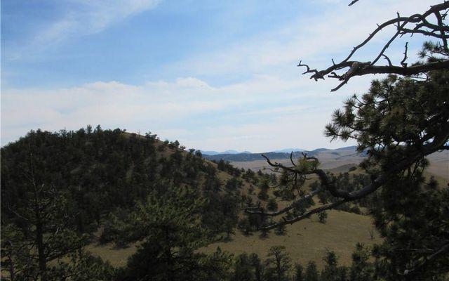 865 Elkhorn View Drive - photo 14