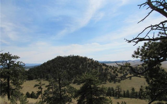 865 Elkhorn View Drive - photo 15