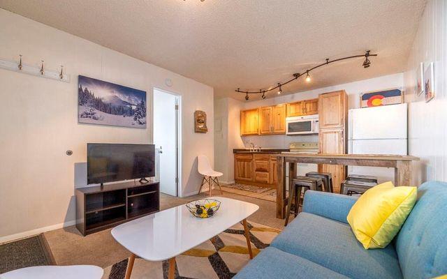 4192 State Hwy 9 # 19L BRECKENRIDGE, Colorado 80424