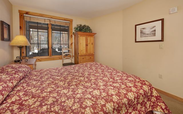 Buffalo Lodge And The Dakota Condos # 8451 - photo 17