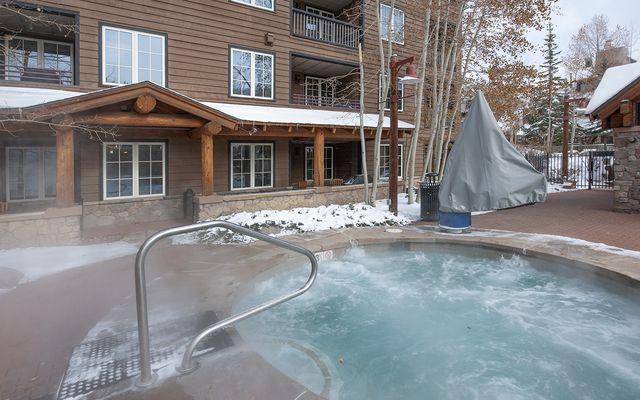 Buffalo Lodge And The Dakota Condos # 8451 - photo 22