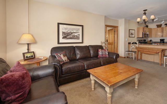 Buffalo Lodge And The Dakota Condos # 8451 - photo 3