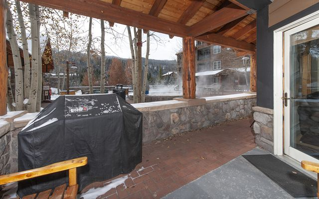 Buffalo Lodge And The Dakota Condos # 8451 - photo 9