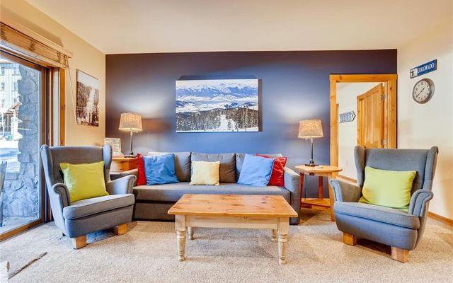 Buffalo Lodge And The Dakota Condos # 8453  - photo 2