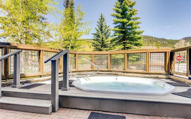 Buffalo Lodge And The Dakota Condos # 8453  - photo 28