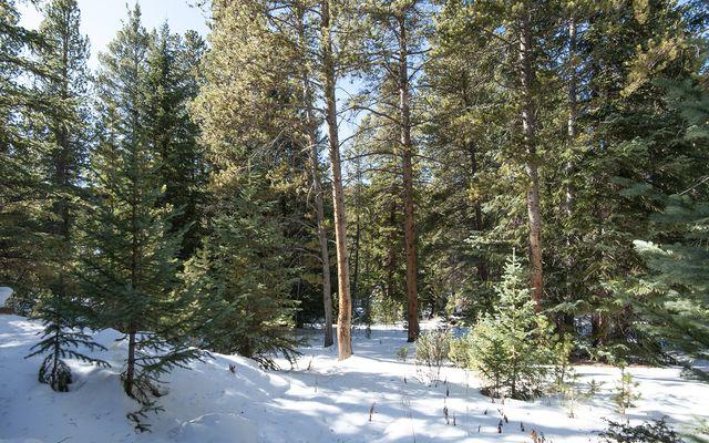 350 Wilderness Drive - photo 28