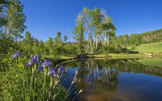 1800 Triple Creek Ranch Road - photo 24