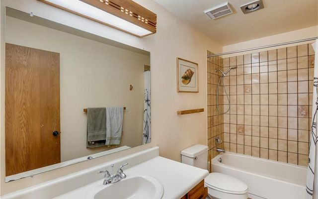 Buffalo Ridge/Village Condo 310 - photo 26