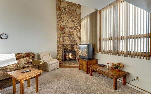 Buffalo Ridge/Village Condo 310 - photo 6