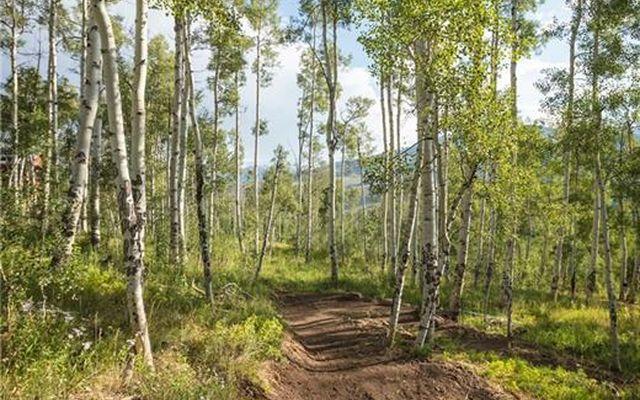55 Hart Trail - photo 17