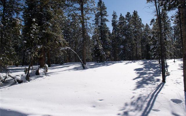 700 Spruce Drive - photo 1