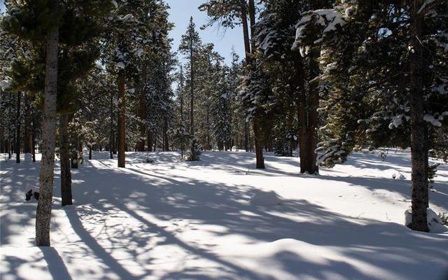 700 Spruce Drive - photo 3