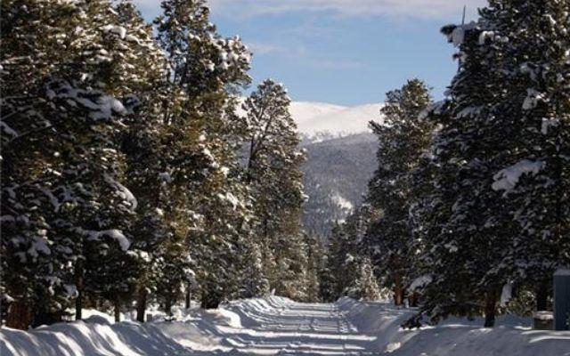 700 Spruce Drive - photo 6