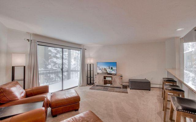 1167 Ski Hill Road #179 BRECKENRIDGE, CO 80424