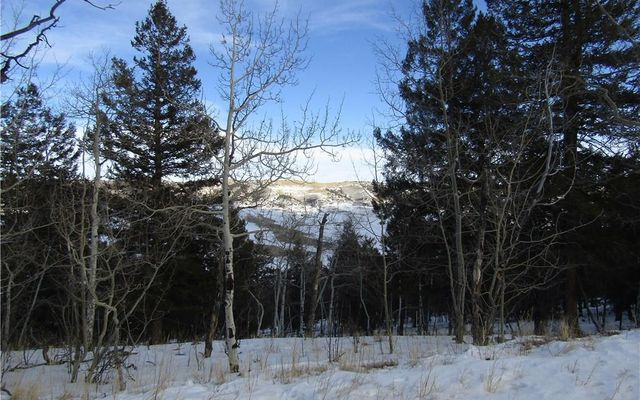 00 MIDDLE FORK VISTA FAIRPLAY, CO 80440