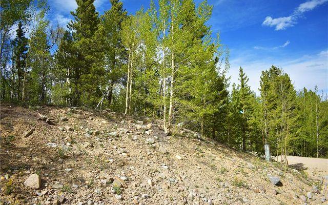 1344 Deer Trail Road - photo 3