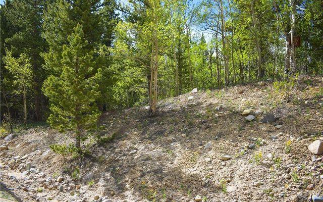 1344 Deer Trail Road - photo 4