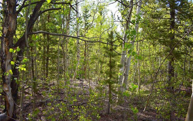1344 Deer Trail Road - photo 5
