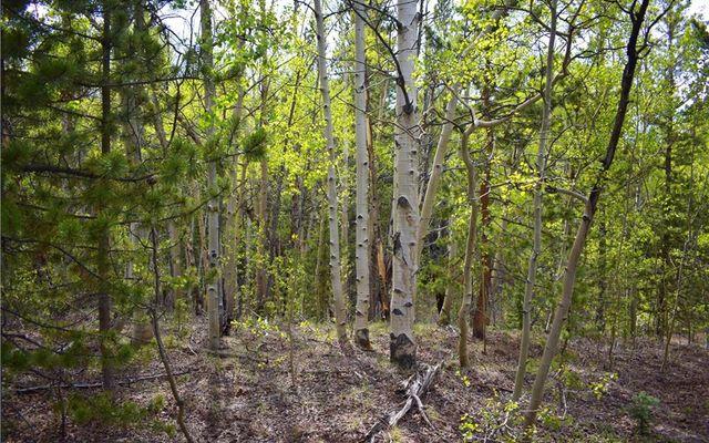 1344 Deer Trail Road - photo 6