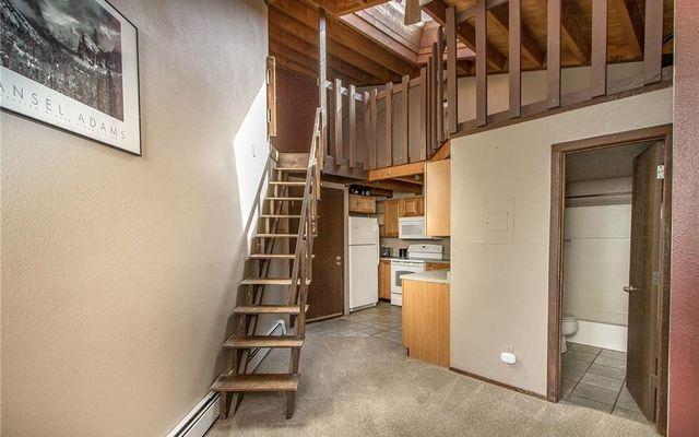 Treehouse Condo 308 - photo 1