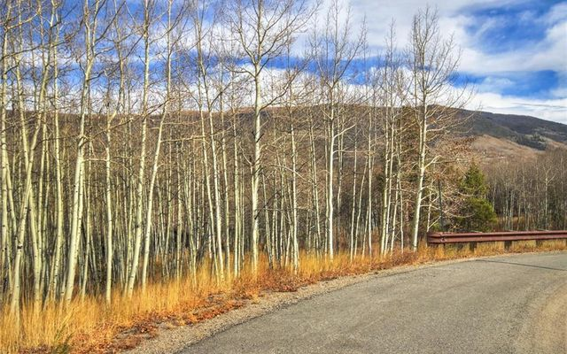 2215 Currant Way SILVERTHORNE, CO 80498