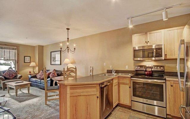 100 Dercum Square #8401 KEYSTONE, CO 80435
