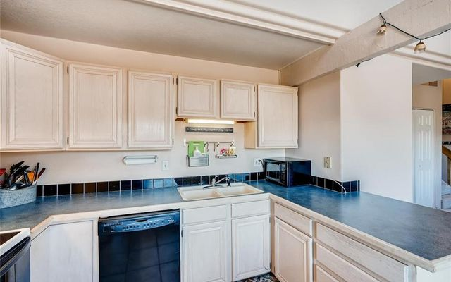 Buffalo Ridge Condo 301f - photo 5